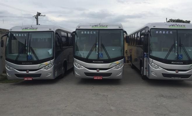 Imagem ilustrativa da notícia: Actur renova frota de fretamento com 13 Volksbus