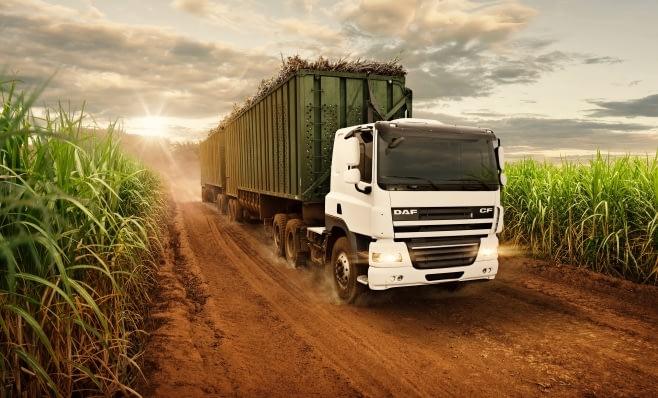 Imagem ilustrativa da notícia: DAF ingressa no segmento off road