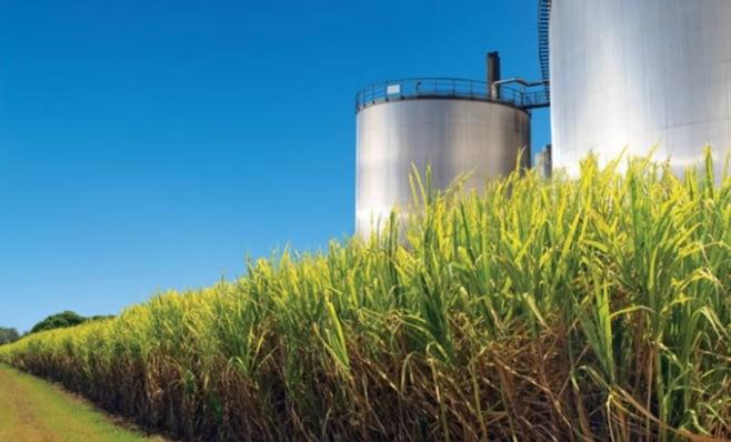 Imagem ilustrativa da notícia: Produção de etanol crescerá este ano