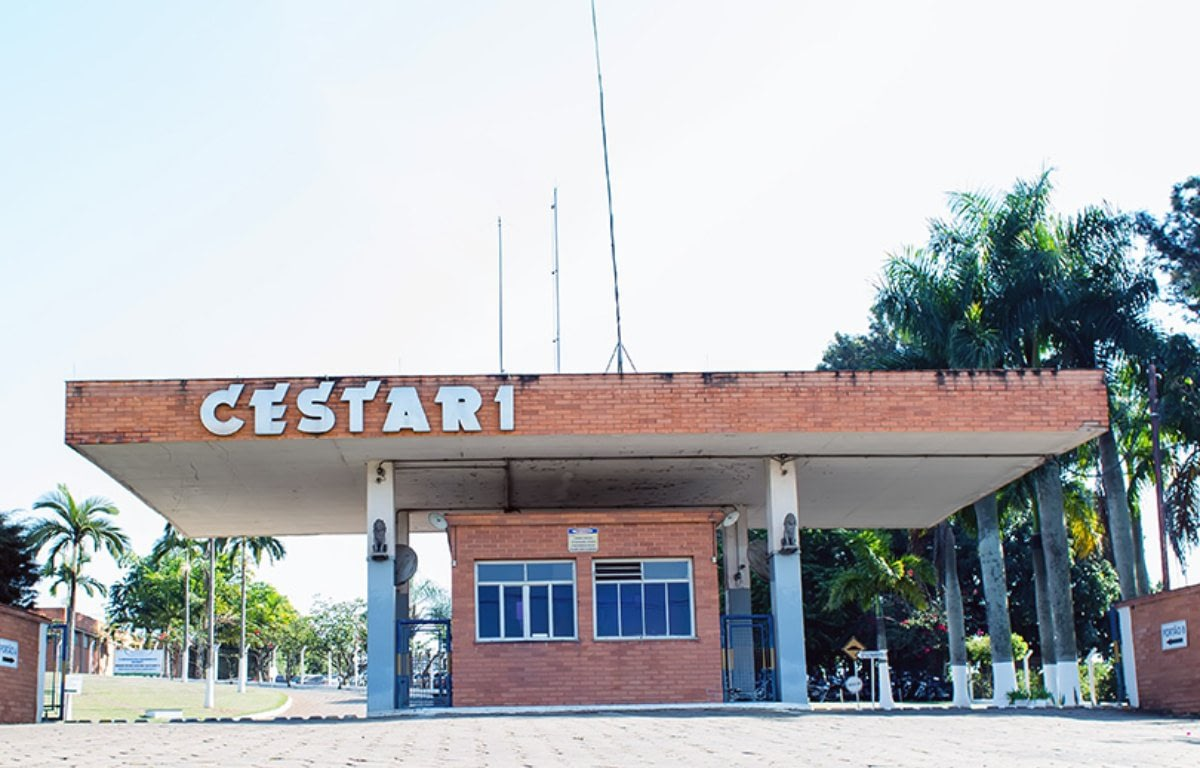 Imagem ilustrativa da notícia: Cestari inicia produção para Toyota TNGA em julho